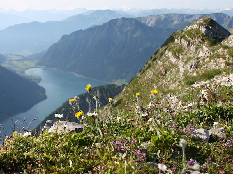 Ausblick vom Seeberg Richtung Achensee und Maurach
